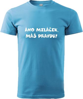 c1f245f7c Pánske tričko Áno miláčik... | Vtipné tričká